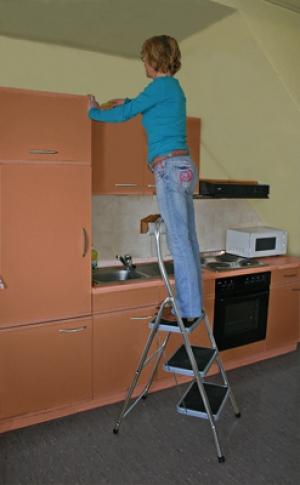 Лестница стремянка Toppy XL 2 ступени купить на выгодных условиях в Липецке